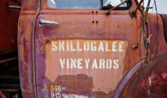 Skillogalee Vineyards wears its age on its sleeve (est. 1860s).