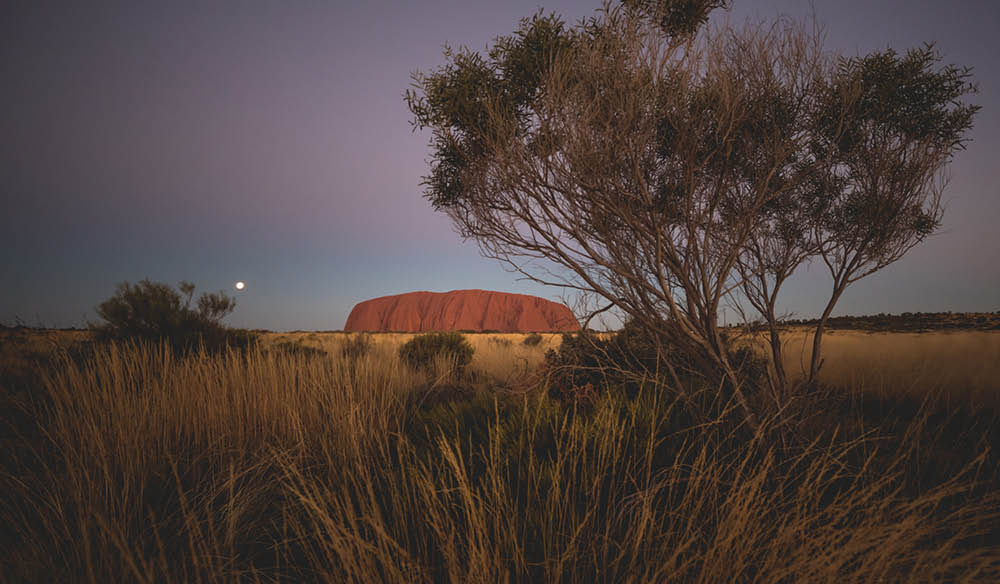 Uluru New Year's Eve with Intrepid Travel