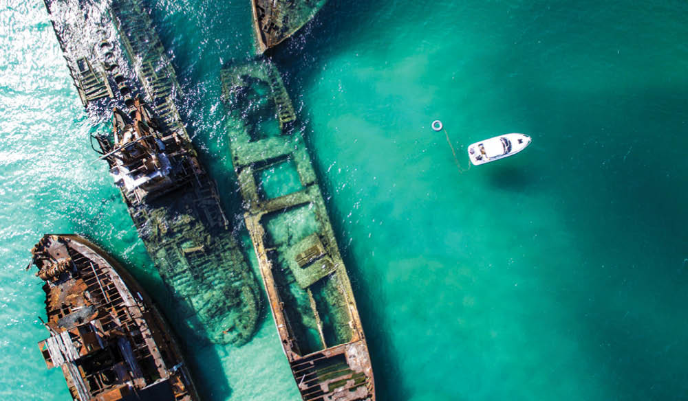 Tangalooma Wrecks is just one (very good reason) to get in the water off Moreton Island.
