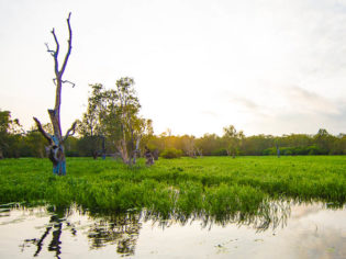 Kakadu, Darwin & the Top End wilderness