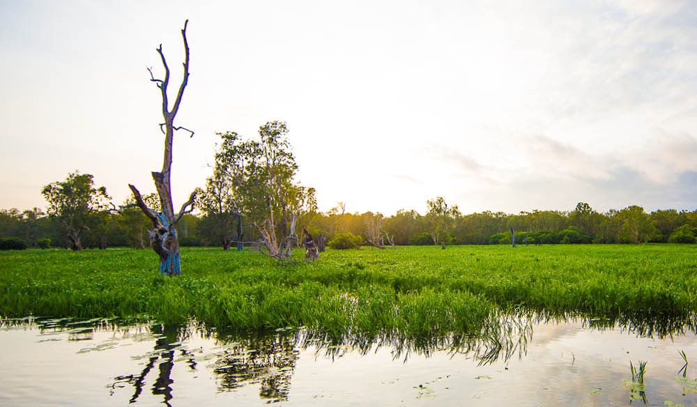 The beautiful expanses of Kakadu and Darwin