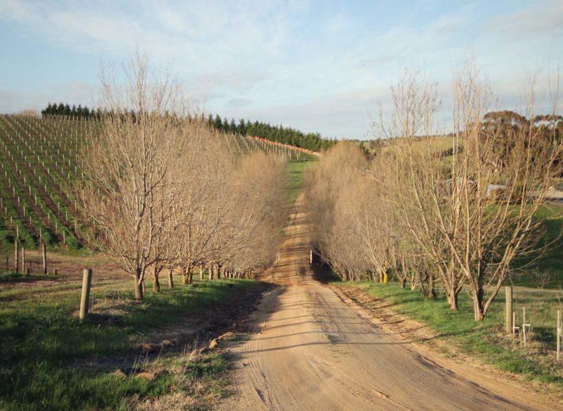 Moorabool Valley Taste Trail Melbourne geelong winery