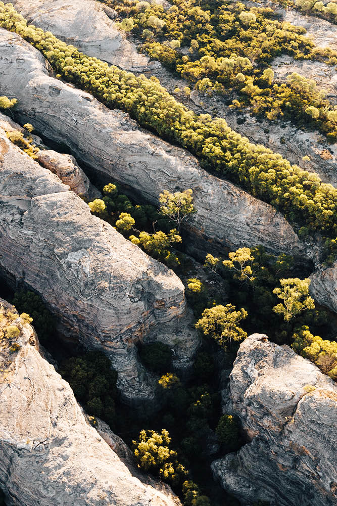 Giant slabs of stone threaded with greenery puncture the surrounding landscape (photo: Brook James).