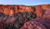 Kings Canyon Rim Walk