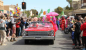 mardi gras celebration yes vote gay LBGT community regional country