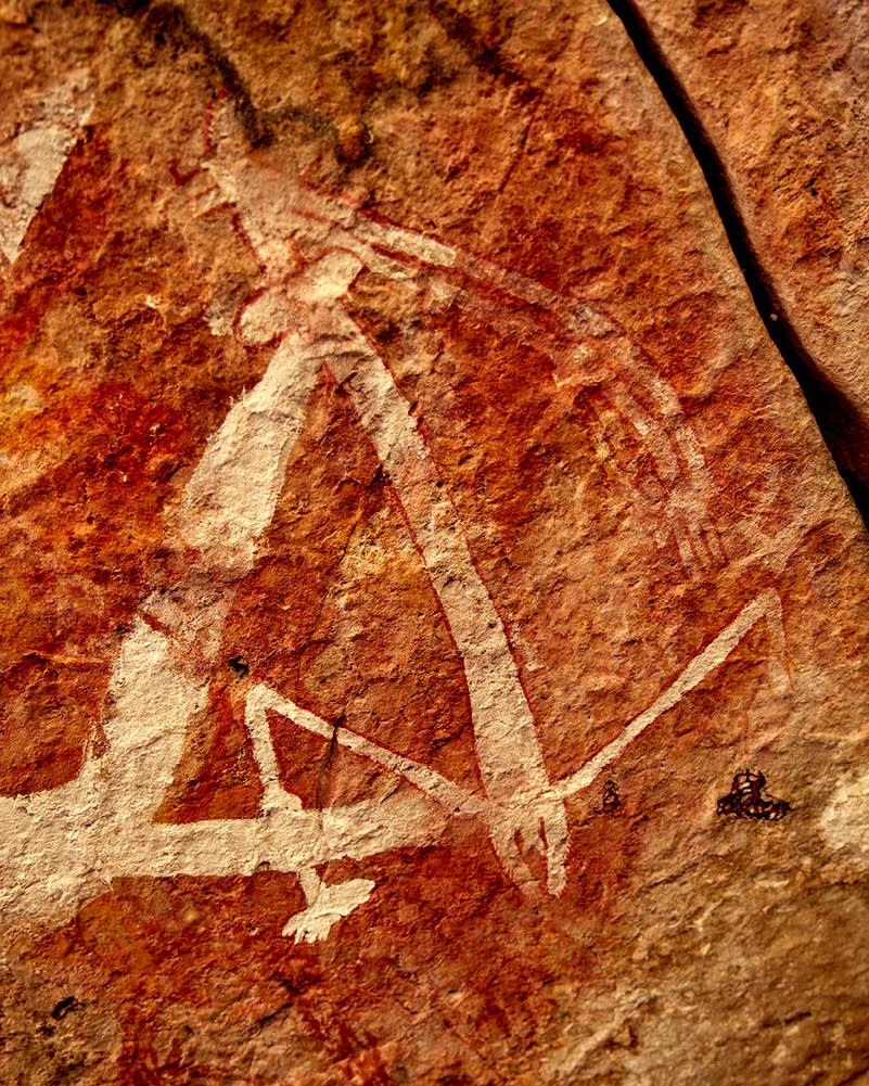 Rock art Mount Borradaile, Davidson's Arnhem Land Safaris