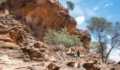 You'll need an Aboriginal heritage guide to get into these restricted areas of Mutawintji National Park.