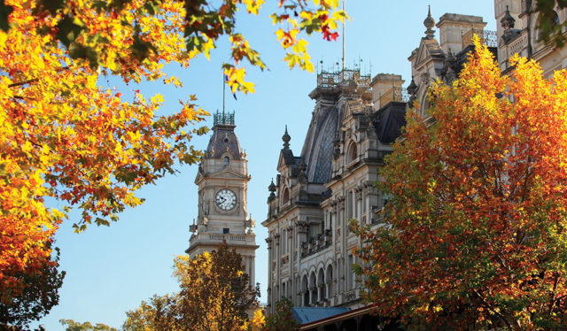 Bendigo Autumn