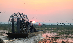 Bamurru airboat, Northern Territory