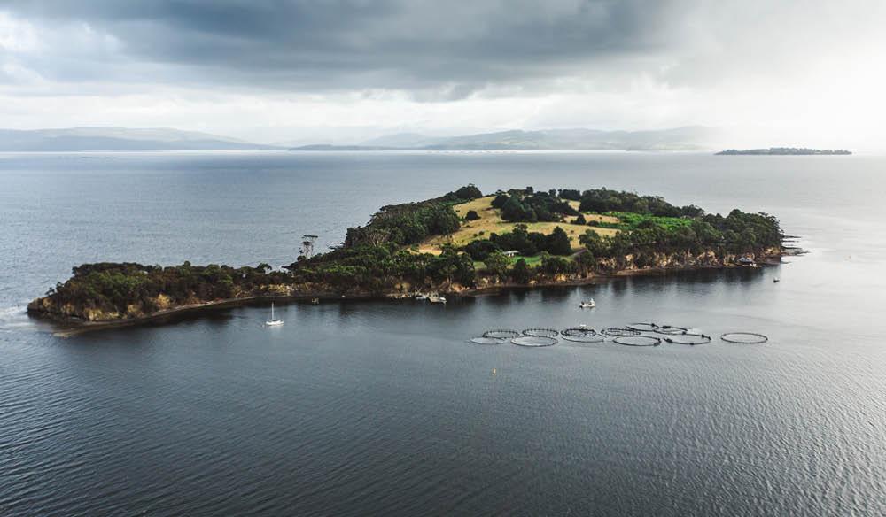 Satellite Island Tasmania