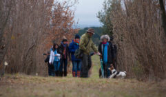 Winter Truffle Festival, Blessing of the Dogs, Canberra