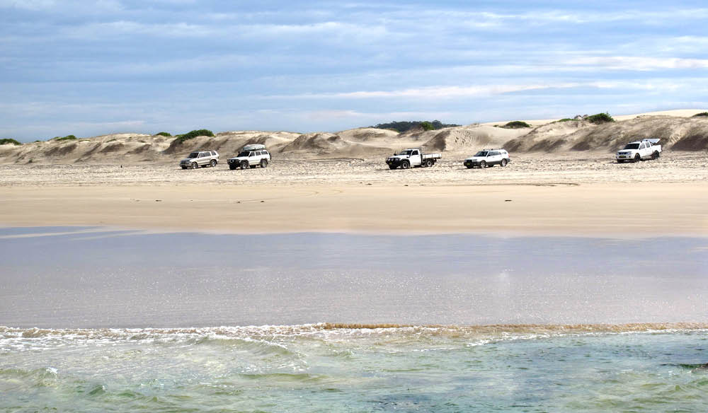 Port Stephens beaches welcome the chance for a drive