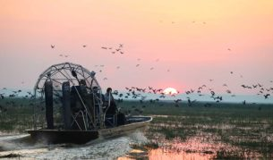 Bamurru Airboat Safari