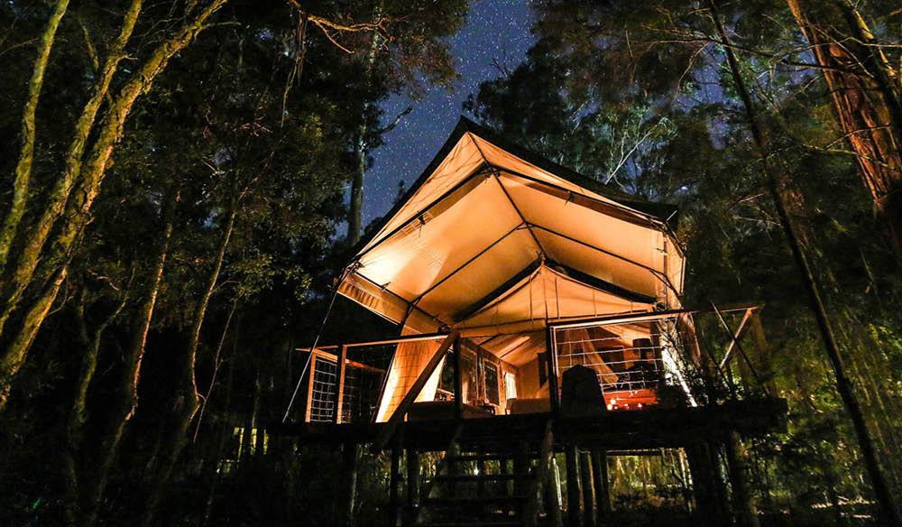 Night views of Paperback camp