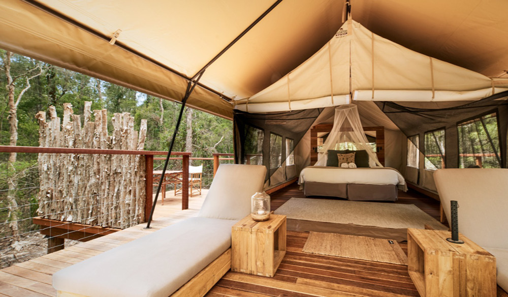 Comfort to the max at paperbark camp