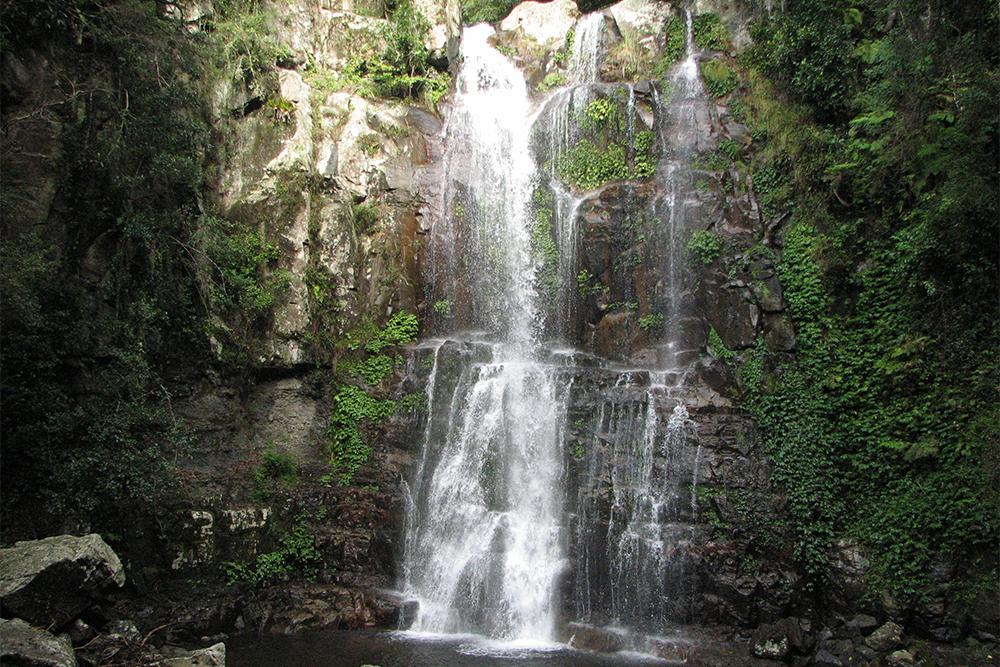 Minnamurra Falls at the High Point of the Minnamurra Rainforest Walk