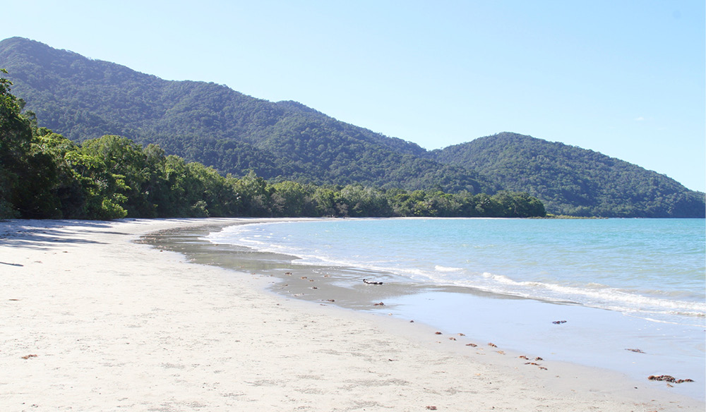 Cape Tribulation Beach QLD