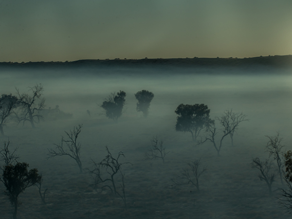 The fog climbs over the trees of the deserted terrain at the Big Red Bash festival, Birdsville