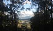 The view of Mount Warning.