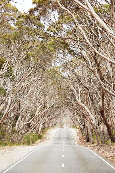 Penneshaw, Kangaroo Island.