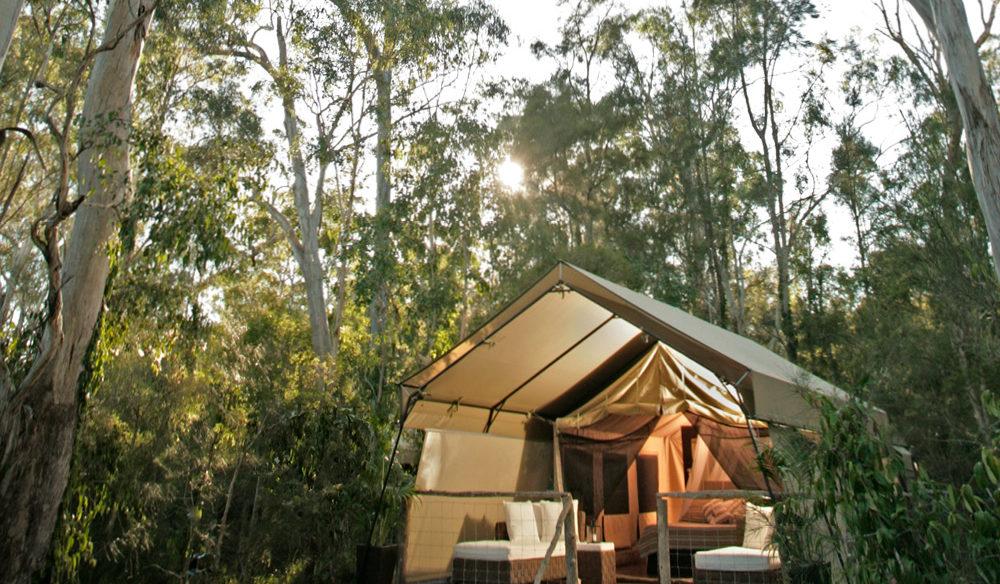 Paperbark Camp in Jervis Bay.