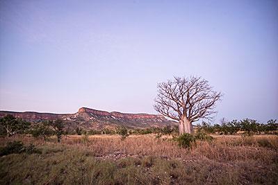 Cockburn Ranges, The Kimberley.