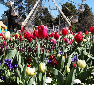Floriade Canberra