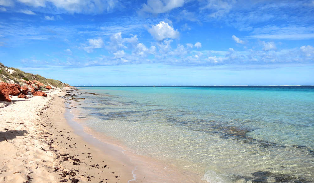 Beach Ningaloo reef