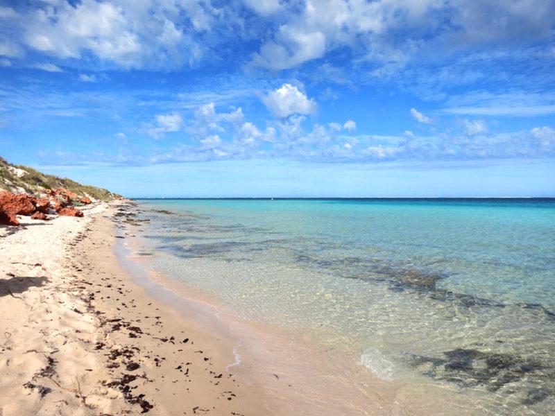Beach Ningaloo reef