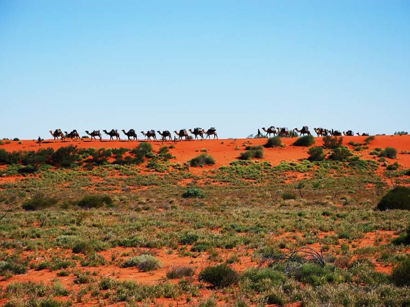 the australian outback  the best tours  stays and ways to travel