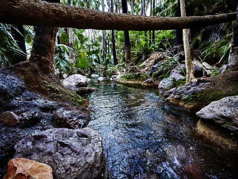 Zebedee Springs, El Questro Wilderness Park