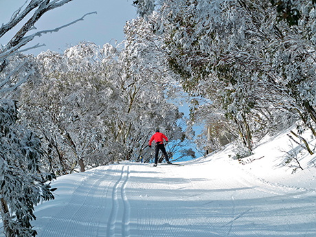 Perisher skiing