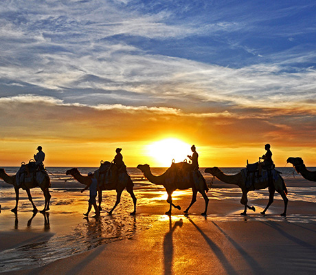 Camel ride Broome