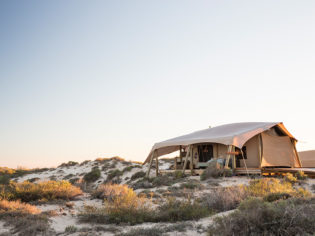 Sal Salis honeymoon tent