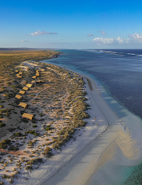 Sal Salis aerial over beach