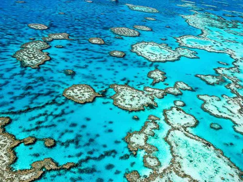 Great Barrier Reef, QLD