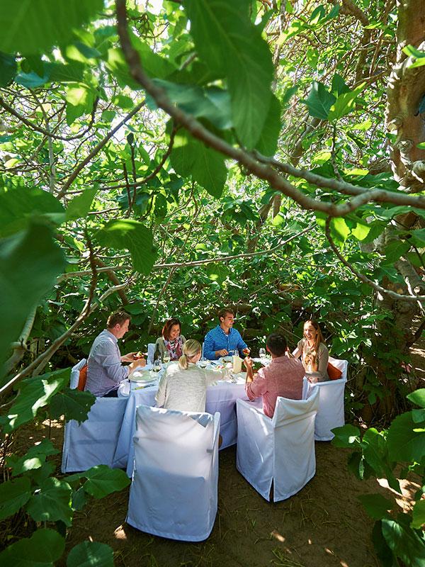 Gastronomo wilderness dining experience