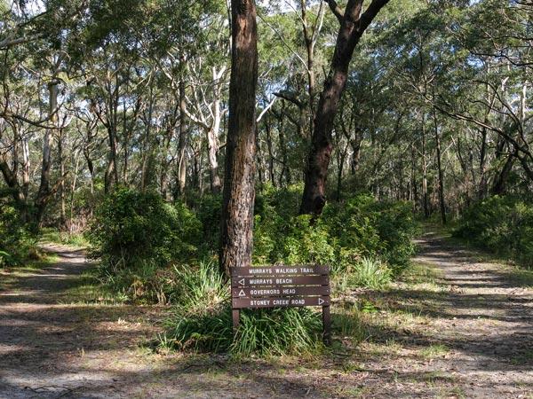 Walk through Booderee National Park