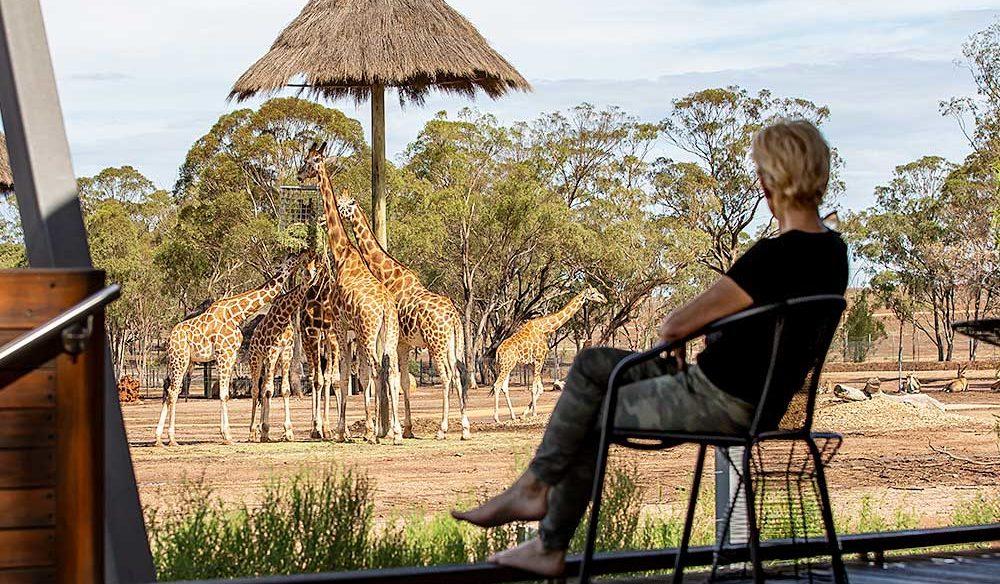 Zoofari Lodge, Dubbo